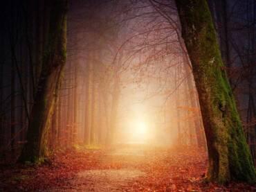 Jungovo tumačenje snova